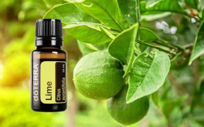 ätherisches Lime Öl