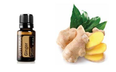 ätherisches Ginger Öl – Ingwer