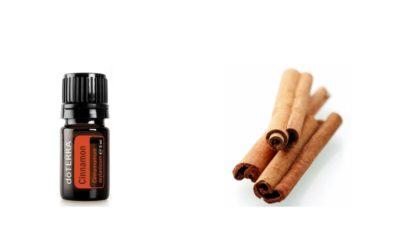 ätherisches Cinnamon Öl