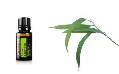 ätherisches Lemon Eucalyptus Öl von doTERRA