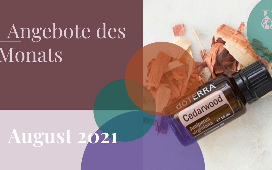 Angebote und Events im August 2021